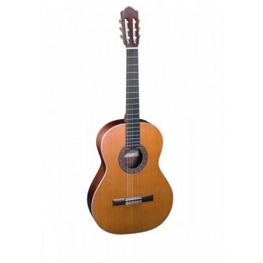 Almansa  C401 4/4  muziekschool pakket